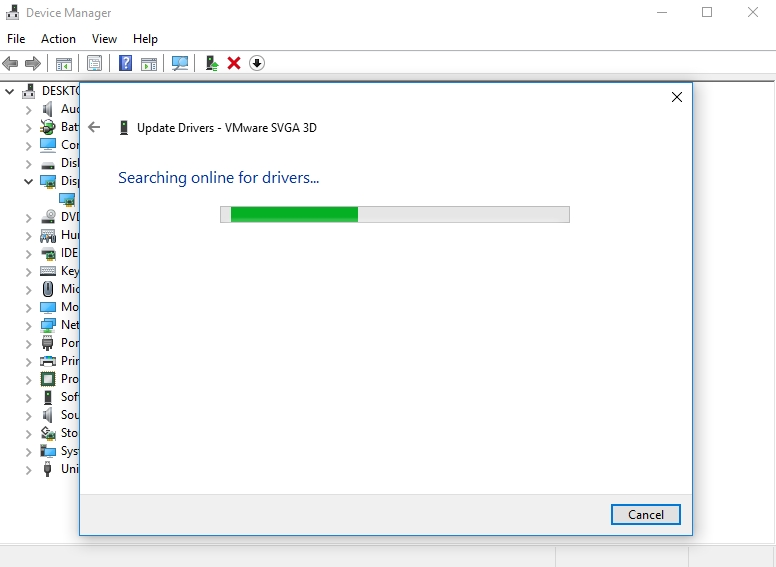 Update your graphics driver, using Device Manager